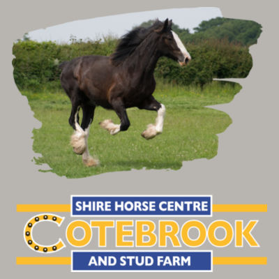 COTEBROOK SHIRE HORSE ANNA - 100% Pre-shrunk ringspun cotton T-Shirt Design