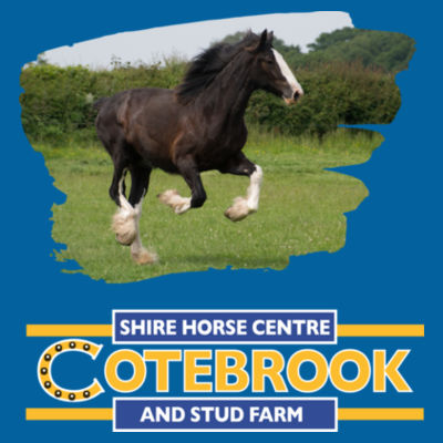 COTEBROOK SHIRE HORSE ANNA - 100% Organic ringspun combed cotton T shirt Design