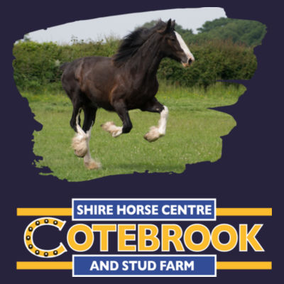 Cotebrook Shire Horse anna - kids College Hoodie Design